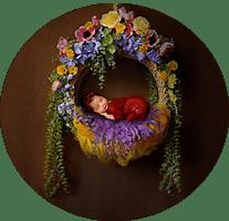 the portrait studio online gallery